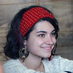 Представитель лагеря Сарваш в России 2015–2019